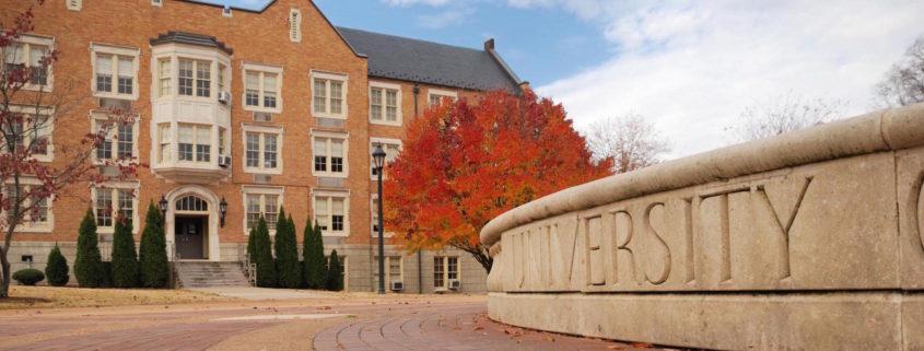 University - Apply Ivy